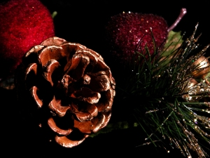 bough and pinecone